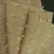 Canvas_Beige (1)